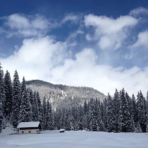 4_Gichner_Snowy Landscape