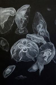 12 - Maggie Davis-Jelly Fish