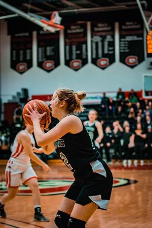Holy Family Girls Basketball Section Final vs. Annandale Mar 8, 2019: Grace Elander '20 (12)