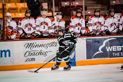 Holy Family Boys Varsity Hockey Section Playoff vs. Eden Prairie Feb 27, 2019: Trey Fechko '22 (5)