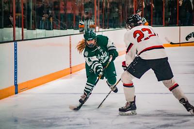 Holy Family Girls Varsity Hockey Section Playoff vs. Shakopee Feb 8, 2019: Cecily Cronin '20 (4)