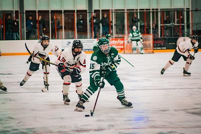 Holy Family Girls Varsity Hockey Section Playoff vs. Shakopee Feb 8, 2019: Captain Lauren Hickey '20 (15)