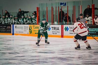Holy Family Girls Varsity Hockey Section Playoff vs. Shakopee Feb 8, 2019: Maeve Kelly '22 (8)