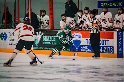 Holy Family Girls Varsity Hockey Section Playoff vs. Shakopee Feb 8, 2019: Kayla Woytcke '22 (28)
