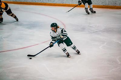 Holy Family Girls Varsity Hockey vs. Hutchinson Jan 4, 2019: MacKenzie Moss '22 (3)