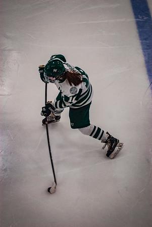 Holy Family Girls Varsity Hockey vs. Hutchinson Jan 4, 2019: Maddie Morgan '22 (16)
