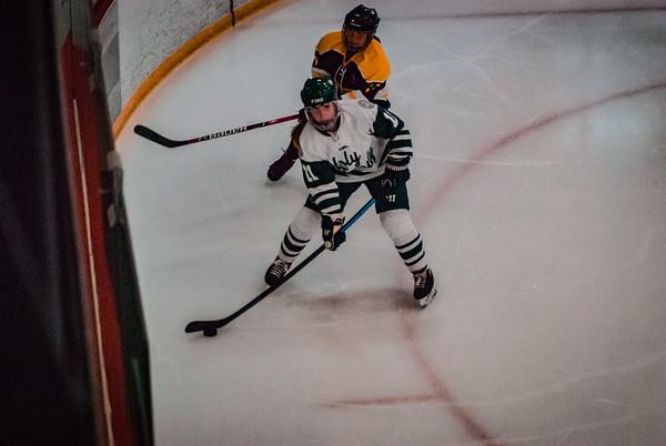 Holy Family Girls Varsity Hockey vs. Hutchinson Jan 4, 2019: MacKenzie McMillan '22 (11)