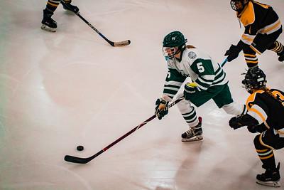 Holy Family Girls Varsity Hockey vs. Hutchinson Jan 4, 2019: Sadie Long '21 (5)