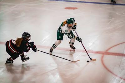 Holy Family Girls Varsity Hockey vs. New Prague Jan 22, 2019: Taylor Koeppl '23 (14)