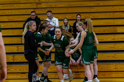 Holy Family's Nicole Bowlin '23 (23) vs. Maple Lake at Section 5AA Round of 16 - Collin Nawrocki/The Phoenix