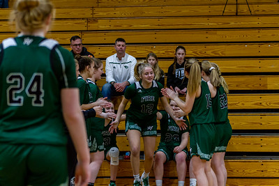 Holy Family's Captain Grace Elander '20 (12) vs. Maple Lake at Section 5AA Round of 16 - Collin Nawrocki/The Phoenix