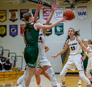 Holy Family Varsity Girls Basketball vs. New Prague, 1/24/20: Captain Abbey Fink '20 (11)