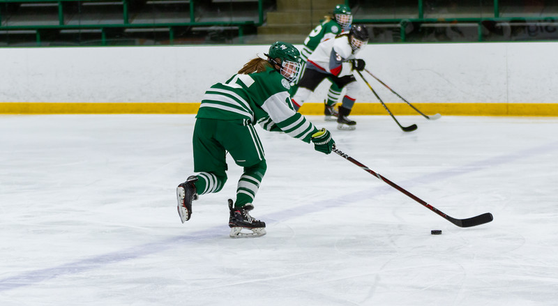 Holy Family's Lauren Hickey '20 (15) vs. Eden Prairie at Braemar Arena - Collin Nawrocki/The Phoenix