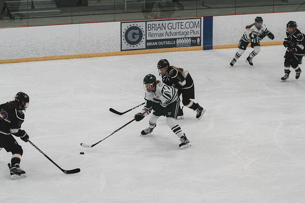 Holy Family Varsity Girls Hockey vs. Waconia, 1/9/20: Grayson Limke '23 (19)