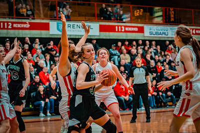 Holy Family Girls Basketball Section Final vs. Annandale Mar 8, 2019: Grace Conroy '19 (30)