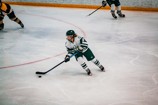 Holy Family Girls Varsity Hockey vs. Hutchinson Jan 4, 2019: MacKenzie Moss '22 (3)