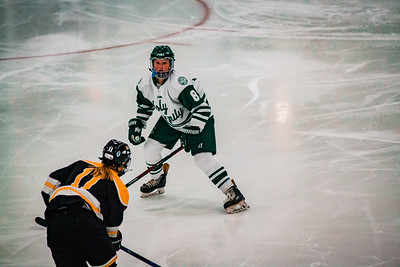 Holy Family Girls Varsity Hockey vs. Hutchinson Jan 4, 2019: Maeve Kelly '22 (8)