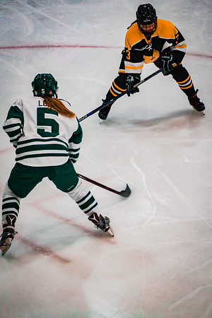 Holy Family Girls Varsity Hockey vs. Hutchinson Jan 4, 2019: Sadie Long '21 (5)