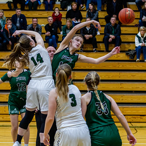 Holy Family's Sophia Hall '23 (13) vs. Maple Lake at Section 5AA Round of 16 - Collin Nawrocki/The Phoenix