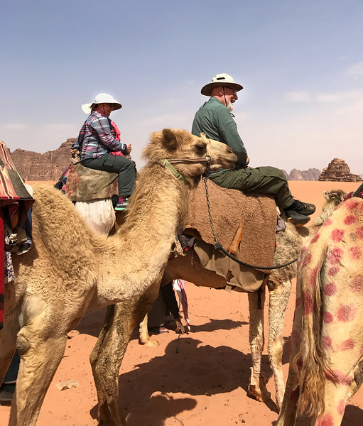 Kate and Patrick on camels.