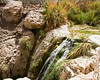 This and the next five shots are of the hike up to the waterfalls at the top of Ein Gedi. This oasis is where David sought refuge from Saul who tried to kill him. David also found Saul in a cave here and could have ended Saul's life but instead cut a portion of Saul's skirt to prove he was honorable to Saul.