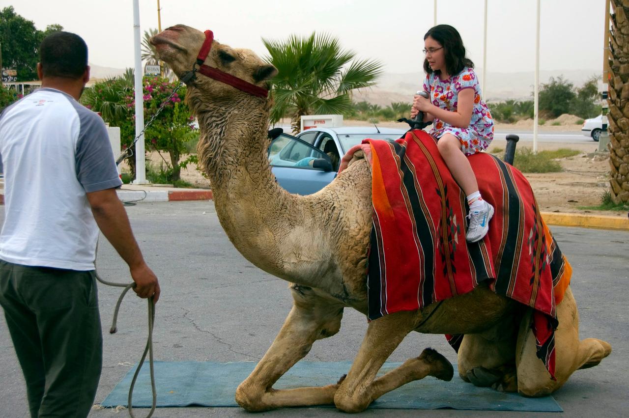 Camel kneeling before Maria gets her ride