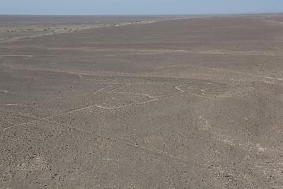 De Nazcar vlakte