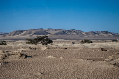 Zandduinen onderweg naar Lima