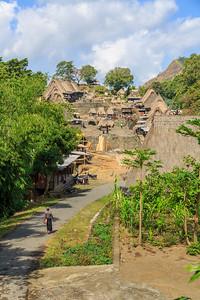 Het Ngada dorp Bena.