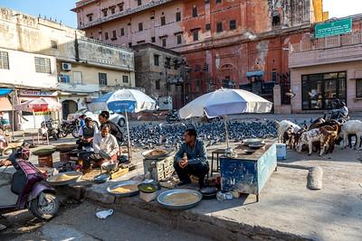jaipur / Duivenvoer verkoper, hindoes beschouwen duiven als brengers van nieuws.