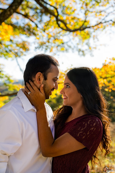 October 24, 2016 Engagemnet session at Brown County State Park in Nashville, IN.  📸Vasquez Photography