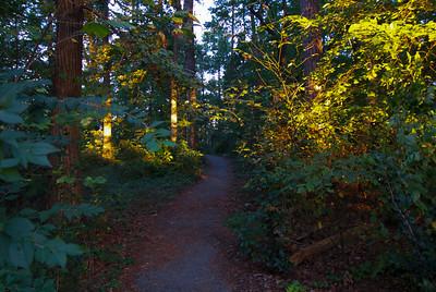 Path to Chapel