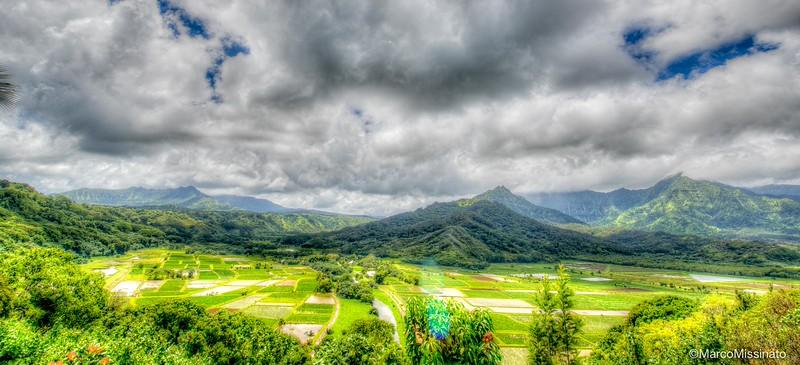 Hawaii--29.jpg