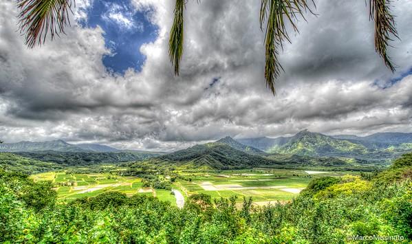 Hawaii--58.jpg