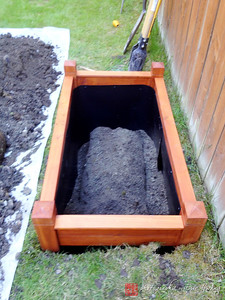 Raised bed in ground