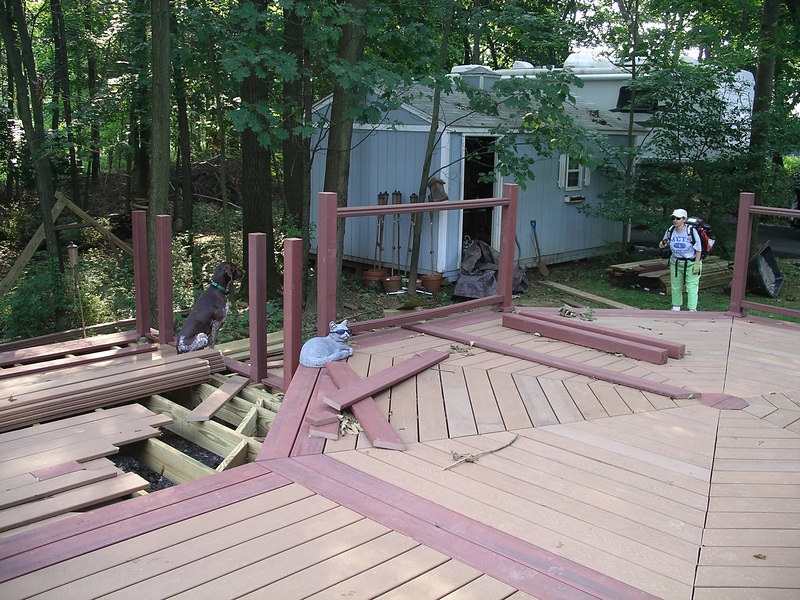 This was taken Saturday afternoon as Roe was just finishing blowing the acorns off of the driveway. Dutchess wasn't too happy with Roe and the Blower. Notice the stack of decking ready to be laid on the lower section.