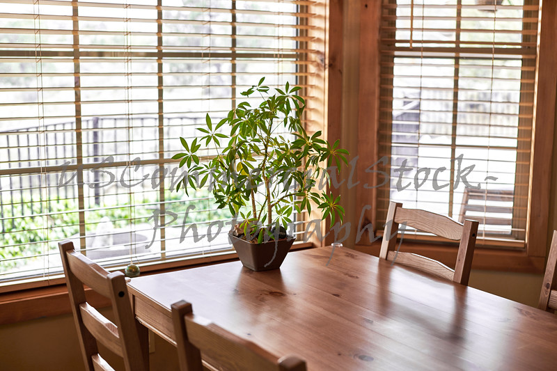 Table with a Potted Plant