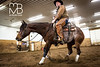 FB_JanssenPerformanceHorses-8547