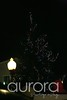 Bethel-ct-treat-street-auroraphotography-8526