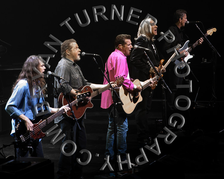 Turner (13 of 84)