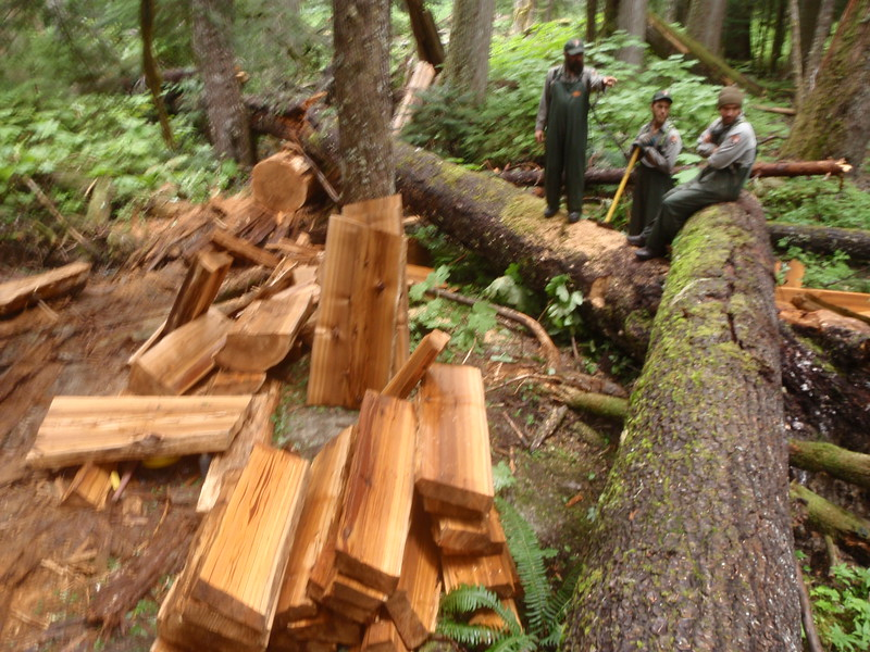 Trail Construction 2014 North Cascades NP