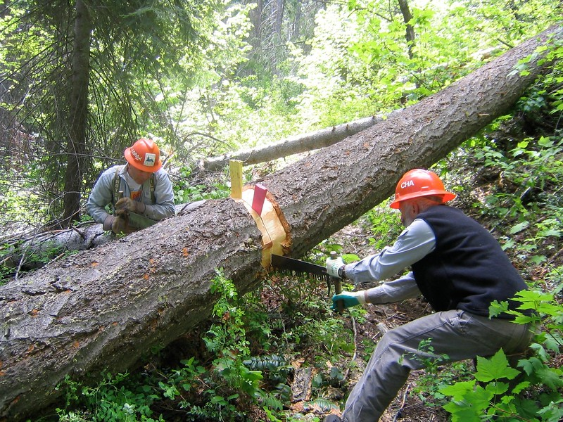 Trail Maintenance 2003-2004 Wenatchee NF