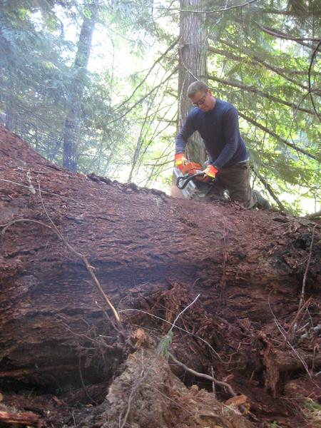 Trail Maintenance 2008-2009 North Cascades NP