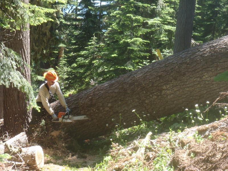Trail Maintenance 2013 Willamette NF