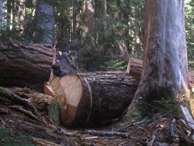 Trail Maintenance 2005-2007 North Cascades NP