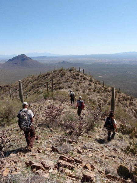 Trail Maintenance 2010 Saguaro NP