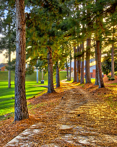 A walk beside Intramural Field