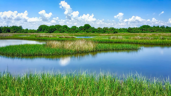 The Marsh at Crawfordville, FL