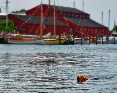 Long Island Photographer