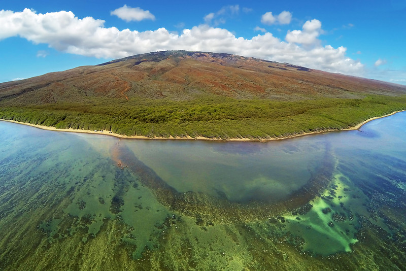 Wai'opae Fishpond - Island of Lana'i, Hawaii